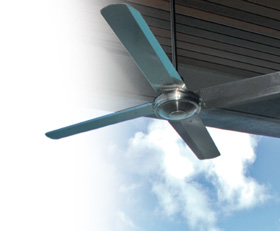 typhoon ceiling fans