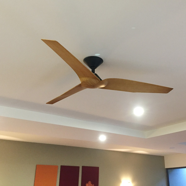 Infinity Dc Ceiling Fan With Remote By Fanco Black Timber Look Blades 54 1 Left