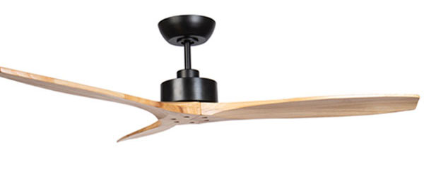 Wynd DC Ceiling Fan